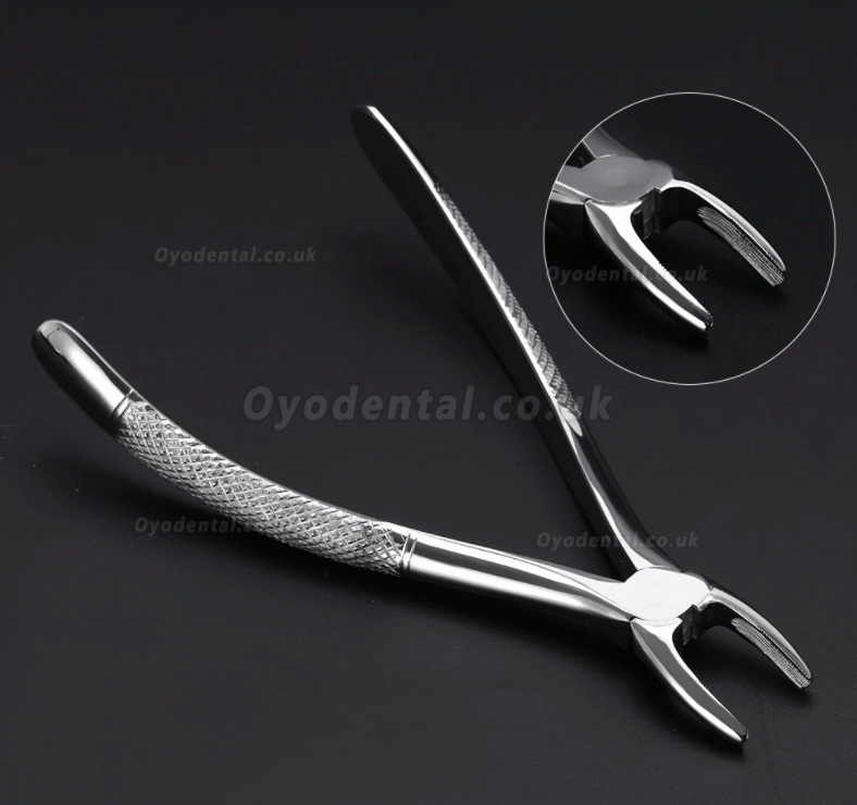 10pcs/set Tooth Extracting Forceps Dental Pliers for Dentist with Tool kit Dental Surgical Extraction Instrument Adults