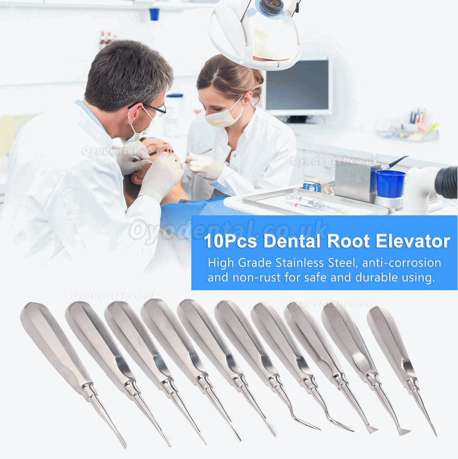 10Pcs Dental Root Elevator Orthodontic Instruments Tooth Loosening Root Extraction Kit